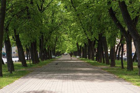 Foto de Wide shady pedestrian street in the city in summer. St. Petersburg. - Imagen libre de derechos