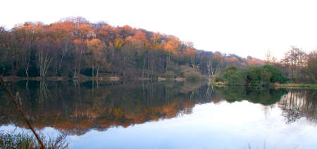 Calm still lake in autumn reflecting red colours of vegetation on island.