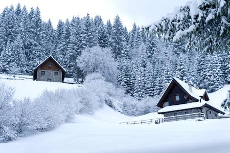 Photo pour Timber Houses In Snowy Landscape - image libre de droit