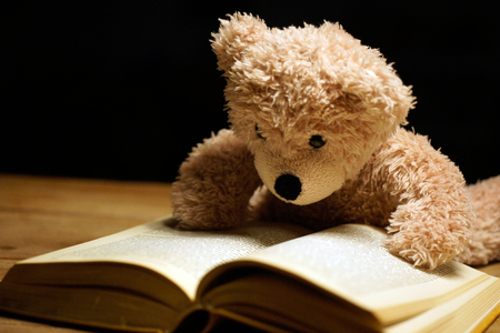 Foto de brown reading teddy bear lying at book - Imagen libre de derechos