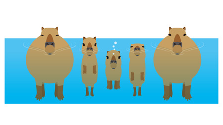 Illustration pour capybara - image libre de droit