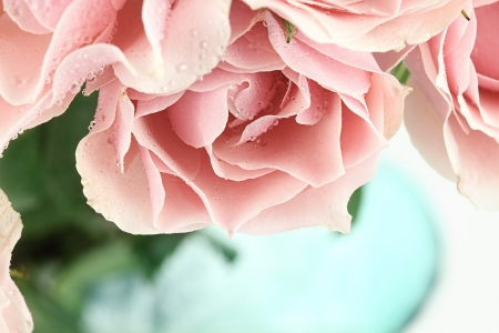 Abstract of a beautiful bouquet of pink tea roses. Shallow depth of field.