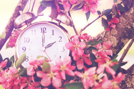 Photo pour Set your clocks back in spring with this whimsical image of a clock surrounded by spring flowers set to 2 o clock! Extreme shallow depth of field with selective focus on clock. - image libre de droit