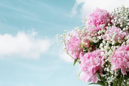 Photo pour Pink Peonies and Baby's Breath flowers aggainst a beautiful spring sky  with copy space for your text. - image libre de droit
