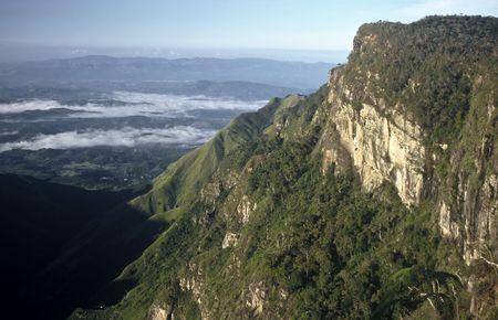 Morning on the plateau of Horton Plains,Sri Lanka