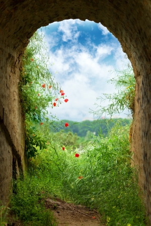 New hope at the end of the tunnel  Dark tunnel corridor with arch opening with green grass and flowers to a beautiful cloudy sky