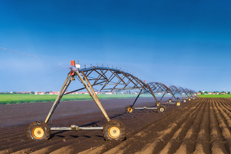 Automated Farming Irrigation Sprinklers System in Operation on Cultivated Agricultural Field on a Bright Sunny Summer Day