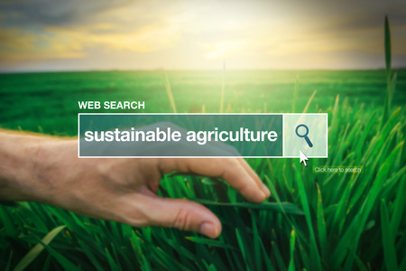Sustainable agriculture - web search bar glossary term on internet