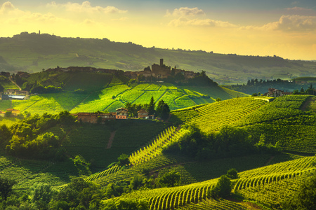 Foto per Langhe vineyards sunset panorama, Castiglione Falletto and La Morra, Piedmont, Northern Italy Europe. - Immagine Royalty Free