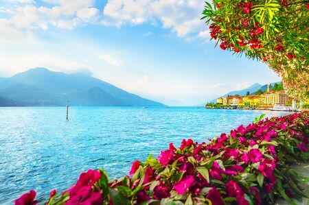 Photo pour Bellagio town and flowers in Como lake district. Italian traditional lake village. Italy, Europe. - image libre de droit