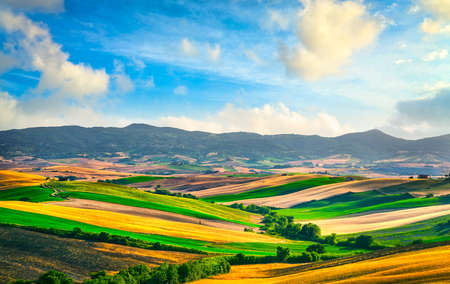Photo for Tuscany countryside panorama, rolling hills and green fields at sunset. Santa Luce, Pisa Italy, Europe - Royalty Free Image