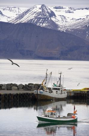 Port of Husavik on the north coast of Iceland