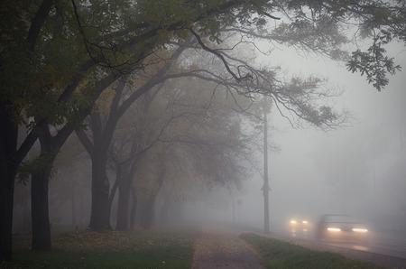 Photo pour Fog in the city an autumn day - image libre de droit