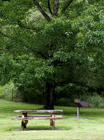 Picnic table and tree at rest area