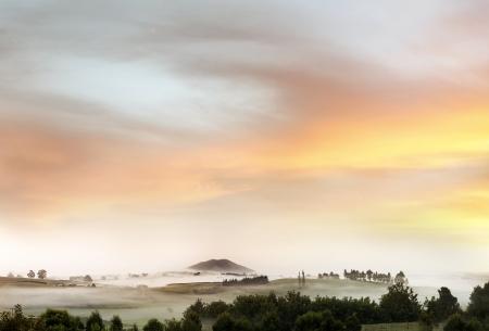 Beautiful warm New Zealand l
