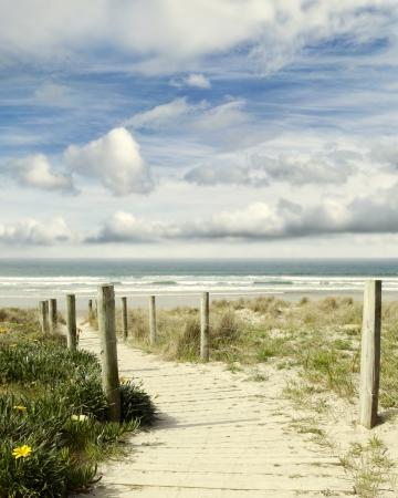 Boardwalk leading to beach scenery