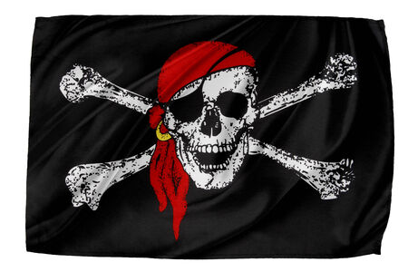 Closeup of silky Pirate flag