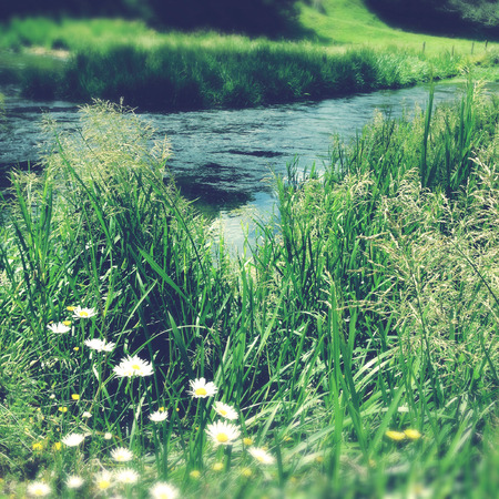 Pure clean spring water,grass and flowers