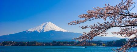 Photo for Fujisan , Mount Fuji view from Kawaguchiko lake, Japan with cherry blossom - Royalty Free Image