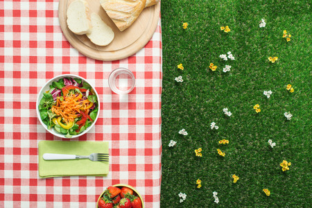 Photo pour Picnic setting: fresh salad bowl on a checked tablecloth - image libre de droit