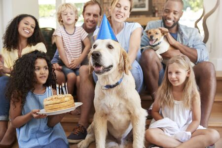 Two families celebrating pet dogÕs birthday at home