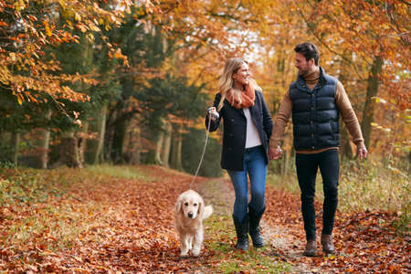 Photo for Loving Couple Walking With Pet Golden Retriever Dog Along Autumn Woodland Path Through Trees - Royalty Free Image