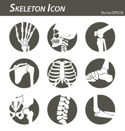 Illustration pour Skeleton icon - image libre de droit