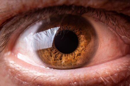 Photo for Brown human eye macro or close up photography - Royalty Free Image