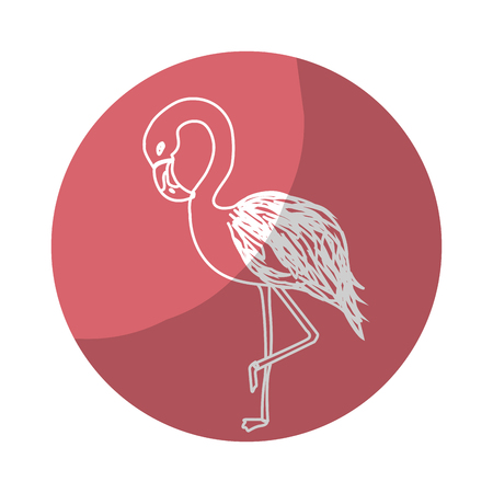 Sticker beauty and exotic flamingo bird animal, vector illustration