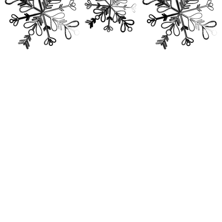 figure rustic natural plant with leaves design vector illustration