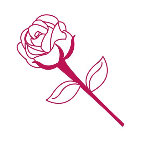 Isolated rose design