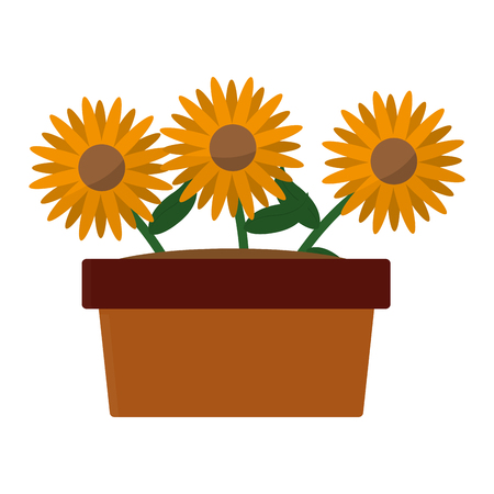 Sunflower of garden floral and nature theme Isolated design Vector illustration