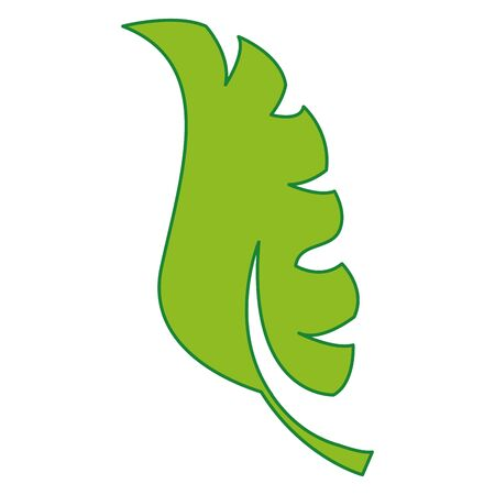 Exotic leaf plant design flat illustration