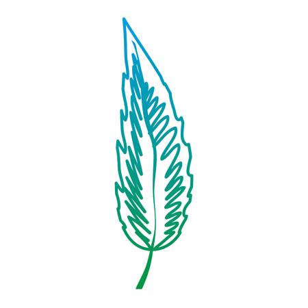degraded line exotic botanic leaf natural plant