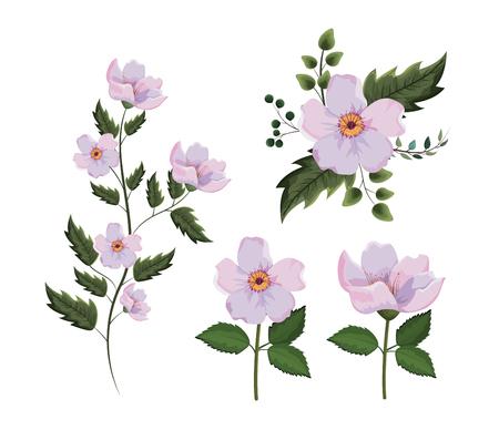 Illustration pour set exotic flowers with branches leaves plants vector illustration - image libre de droit