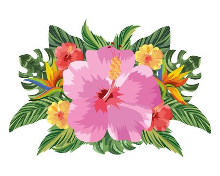 Illustration pour nature flowers cartoon vector illustration graphic design - image libre de droit