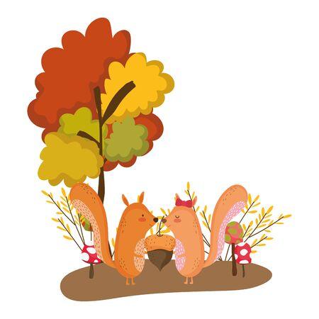 Illustration pour Squirrel cartoon design, Animal cute zoo life nature and fauna theme Vector illustration - image libre de droit