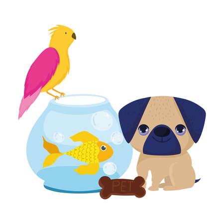 Photo pour pet shop, little puppy bird fish and cookie animal domestic cartoon vector illustration - image libre de droit