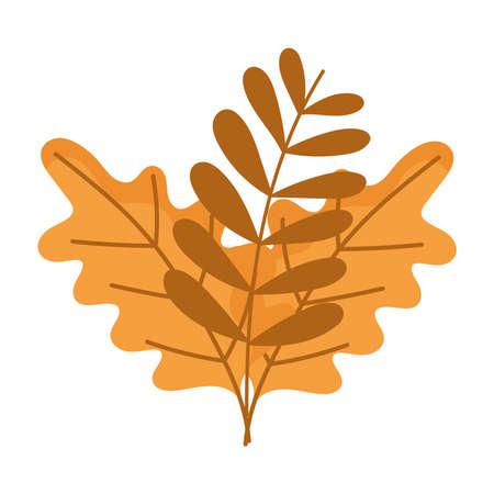 Illustration pour branch leaves autumn isolated design white background vector illustration - image libre de droit