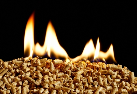 burning wood chip pellets a renewable source of energy becoming popular as a green environmentally friendly fuel for stoves which provide household heating