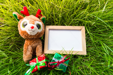 Blank whiteboard for your text on lawn  background with teddy reindeer, christmas gift box for Christmas holiday concept, on sunlight day.