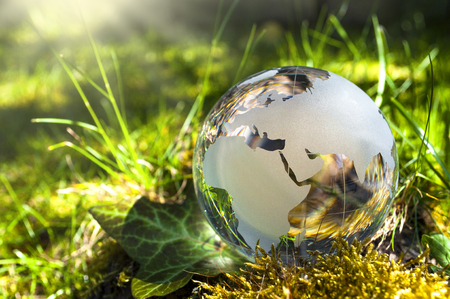Photo for World globe made of glass, earth with grass and sun, nature protection, environmental protection, climate protection - Royalty Free Image