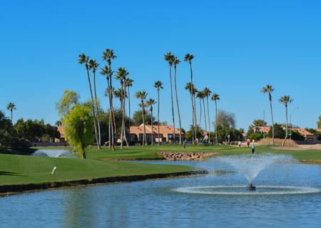 Foto de Water fountains and Palm Trees in Maricopa County, Glendale, Arizona. - Imagen libre de derechos