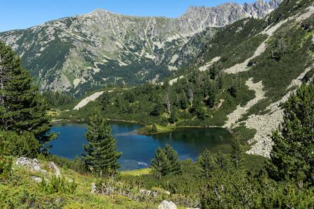 Amazing Landscape with Fish Vasilashko lake, Pirin Mountain, Bulgaria