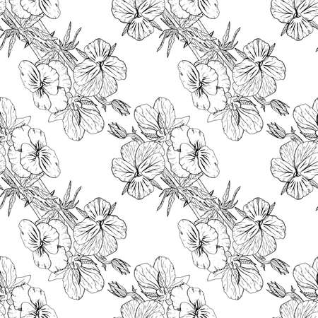 Illustration pour Monochrome floral seamless pattern with hand drawn pansy flowers on white background. Stock vector - image libre de droit