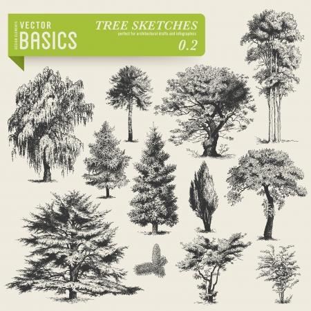vector basics  tree sketches 2