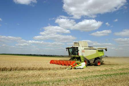 Combine harvest technics on fields