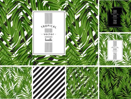 Illustration pour Tropical Palm leaves. Tropic palm. Tropical Palm leaf. Green tropic palm. Green palm summer tropical leaves. Tropic leaves frame.Green summer tropic palm leaves. Square frame.Square design tropic palm - image libre de droit