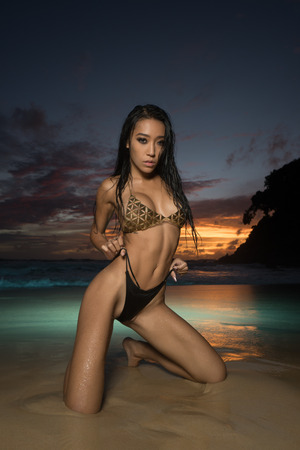 Sensual and elegant brunette beauty wearing gold jewelry bra and black bikini bottom posing on the beach over amazing sea and sunset sky backgroundの写真素材