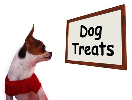 Dog Treats Sign Shows Canine Rewards Or Snacks